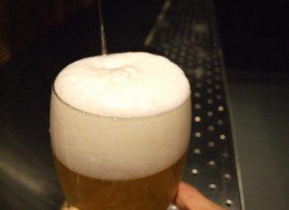 cervezas