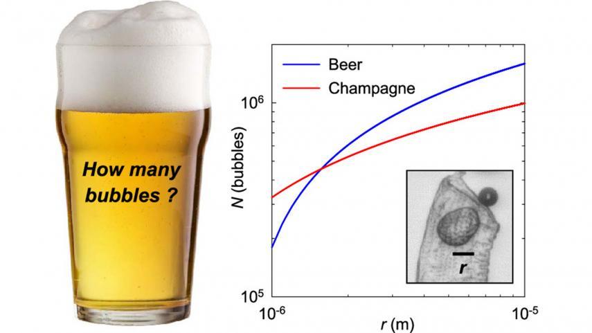 estudio cerveza